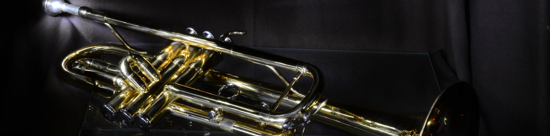 trompette annonce vendre ou acheter une trompette d 39 occasion. Black Bedroom Furniture Sets. Home Design Ideas