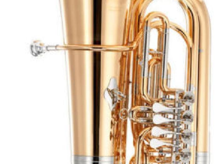 huge discount 7b5e2 25355 B&S GR55-L TUBA SIB 4 PALETTES VERNI avec housse | Trompette ...